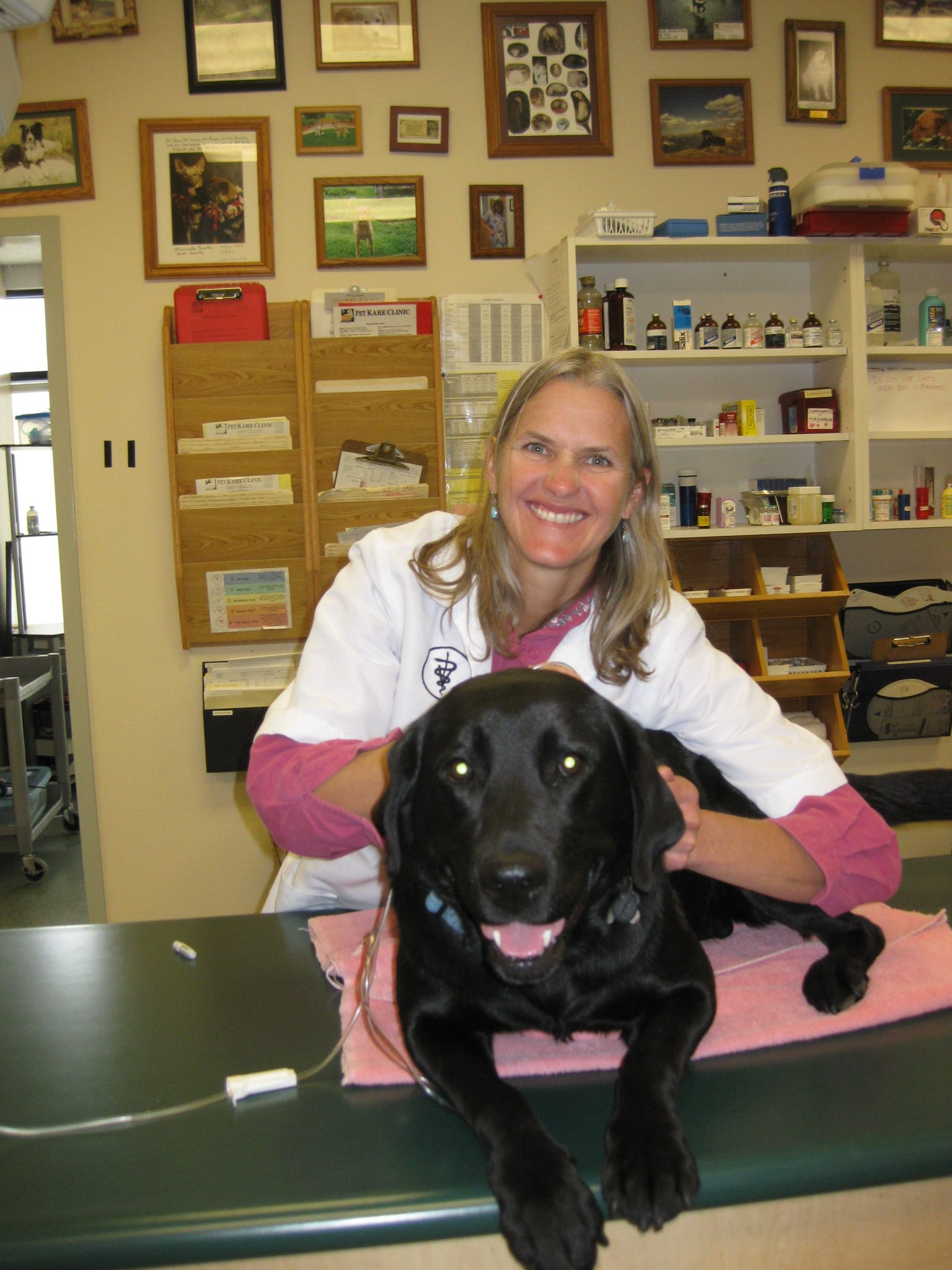 Colorado in job physical therapy - Dr Susan 1