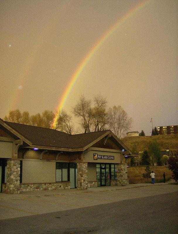 PKC rainbow