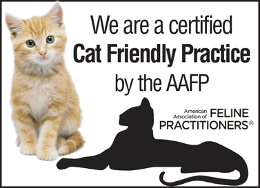 We are a Cat-Friendly Practice! 1