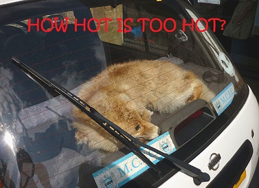 How Hot is Too Hot?