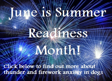 June is Summer Readiness Month!