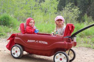 tails n trails wagon
