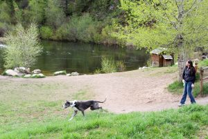 tails n trails by the lake