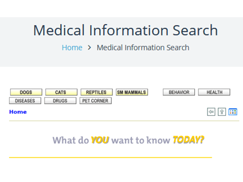 Medical Info Search