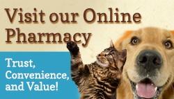 Pet Kare Online Pharmacy