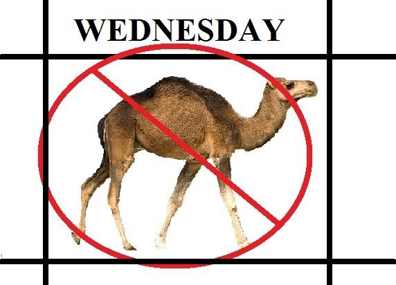 no hump wednesday specials
